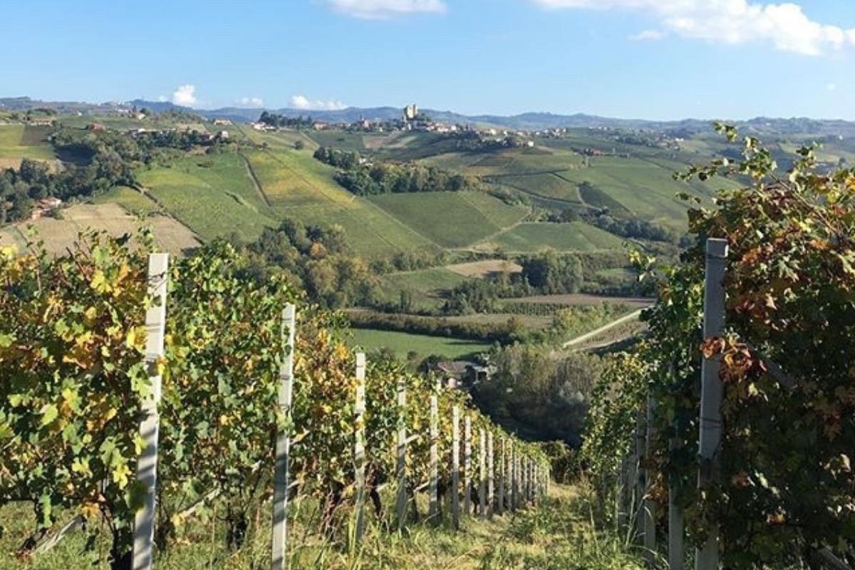 Langhe Monferrato cosa vedere e mangiare - (7)