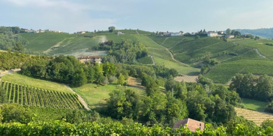 Langhe Monferrato cosa vedere e mangiare - (9)